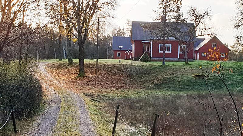 Idyllisk sommerhus med skoven som nabo