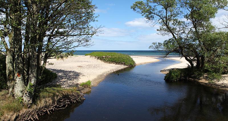 Verkaåns udløb i havet ved Haväng