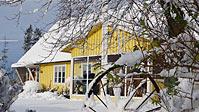 Bo midt i skoven, 55 km øst for Helsingborg, Sverige