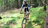 Leje af cykel, MTB Mountainbike og guidede cykelture på Hallandsåsen, Sverige