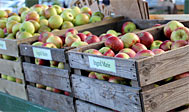 Æblets Hus i Kivik