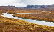 Vandring i Lapland: Alesjaure - Abiskojaure på Kungsleden