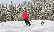 Dackestupet, et lille skisportssted i det sydlige Sverige