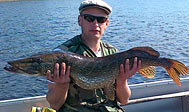 Fiskeri i Åsnen