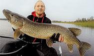 Fiskeri i Sverige