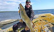 Geddefiskeri i Karlskronas skærgård