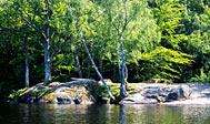Halens Naturreservat