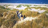 Hanöbugten. Foto: skane.com © sydpol.com
