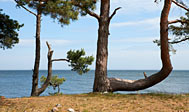 Kalmarsundsleden går langs Sydsveriges østkyst