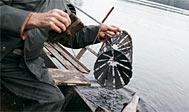 Krebsefiskeri i de svenske søer