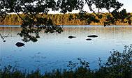 Långasjönäs Naturreservat