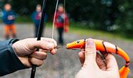 Lystfiskeri i Västra og Östra Ringsjön. Foto: Björn Tesch / imagebank.sweden.se