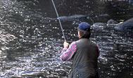 Lystfiskeri i Rönne å. Foto: skane.com © Jörgen Larsson