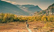 Vandring i Lapland: Vandrere ved Nikkaluokta