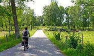Cykelruten Sydostleden - fra Växjö til Simrishamn