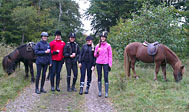 Turridning hos Båstad Islandshästar i Skåne