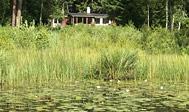 Sommerhus med udsigt over sø med bådebro og badestrand