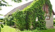 Ferielejlighed på gård nær Kivik i Skåne
